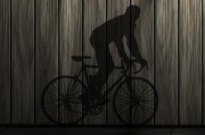 Эксгибиционист на велосипеде пугает детей в Калининском районе