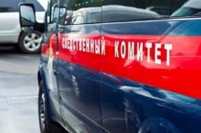 Мертвого мужчину нашли в подвале дома на улице Летчика Пилютова