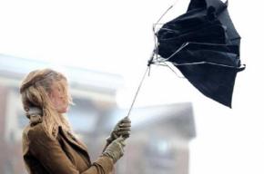 Штормовой ветер продолжит шалить в Петербурге
