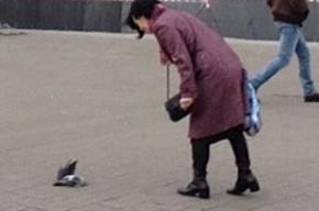 Птицу с отрезанной головой привязали к голубю у «Старой Деревни»