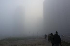 Густой туман спустился на Петербург
