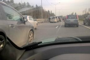«Паровоз» из пяти машин собрался на Новоприозерском шоссе