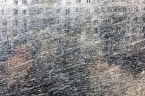 МЧС: Ленобласть ждет мокрый снег и ветер
