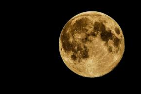 Россия намерена возродить программу изучения Луны луноходами