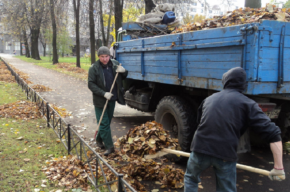 Осенний субботник проходит в Петербурге
