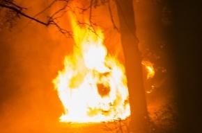 Припаркованная KIA сгорела на Наличной улице
