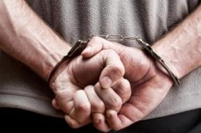 Школьницу в Гатчине напоил и изнасиловал сожитель матери
