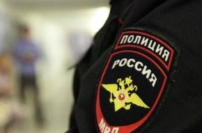 Полиция Петербурга раскрыла серию краж иномарок
