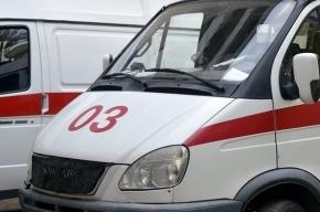 Школьник погиб, выпав из окна на Приморском проспекте