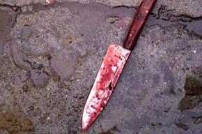 Безработный зарезал жителя Ленобласти во время застолья