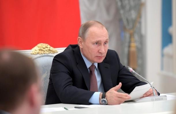 Путину не нравится отсутствие в стране законов о бездомных животных