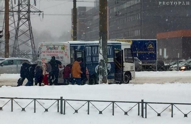Петербуржцам сказали спасибо за толкание автобусов