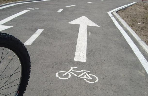 Опрос петербуржцев по велодорожкам «уронили» боты