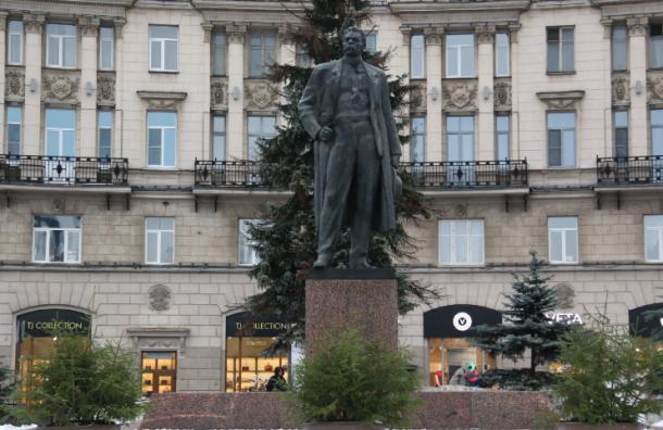 Петербург начали украшать живыми елями