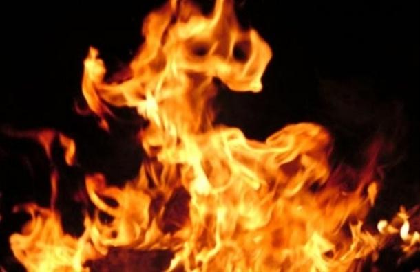 Три человека погибли впожаре вжилом доме под Петербургом