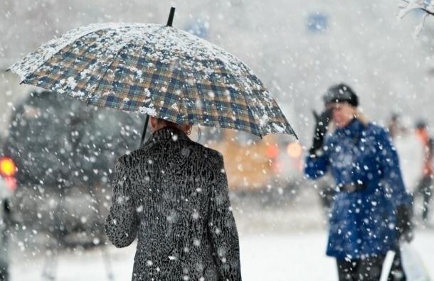 Спасатели предупредили об усилении ветра в Петербурге