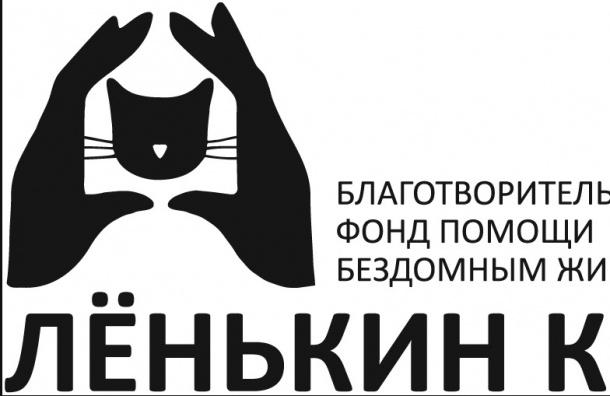«Лёнькин кот» просит помочь