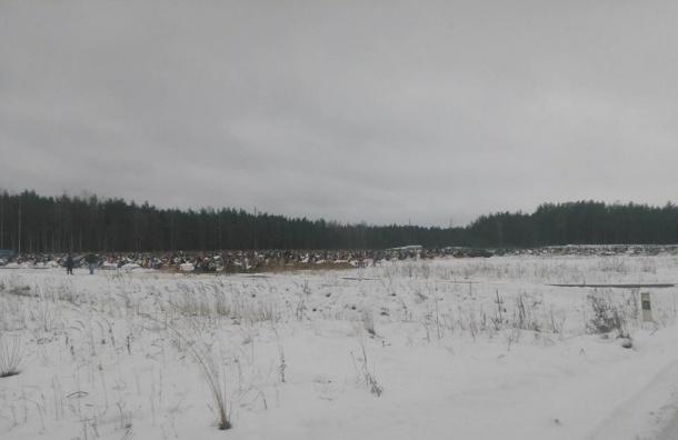 Погибших псковских подростков похоронят порознь