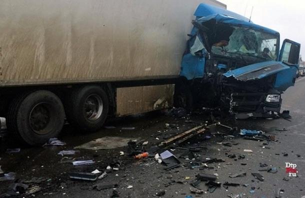 Два человека погибли в аварии на трассе «Кола»