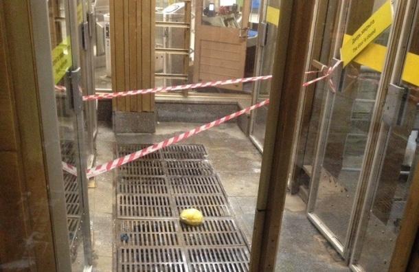 Станцию «Озерки» закрыли из-за желтого пакета