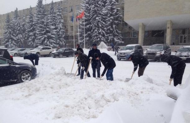 Сотрудники администрации Приморского района решили убирать снег сами