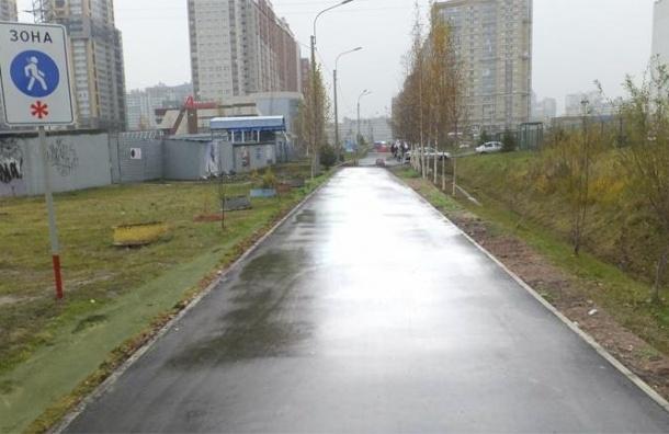 Власти нарисовали асфальт в Приморском районе