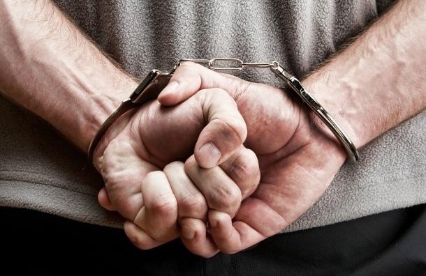 Пожизненный срок требуют дать петербуржцу за убийство жены и двух детей