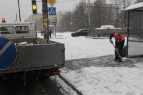 Двенадцать сантиметров снега выпало за неделю в Петербурге