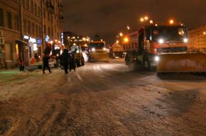 Восемь сантиметров снега может выпасть 30 ноября в Петербурге