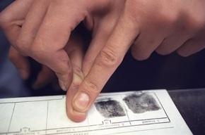 Иностранцев с 2017 года обяжут для въезда в Россию сдать отпечатки пальцев