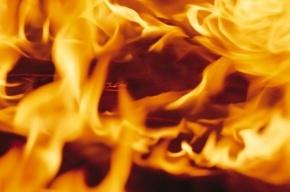 Автомобиль загорелся между Киевской и Заозерной