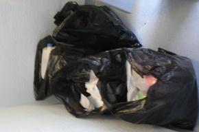 Пакет с мусором заставил нервничать пассажиров «Гостиного двора»