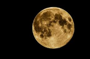 Стало известно, когда первый россиянин высадится на Луну