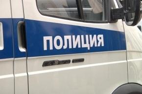 Полиция Тосненского района ищет школьника, севшего в иномарку
