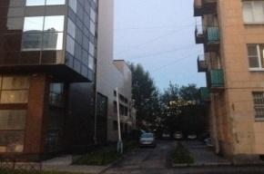 Петербуржцы требуют остановить уплотнительную застройку на Тележной улице
