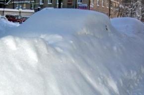 Заснеженными улицами Петербурга вновь займутся дорожники