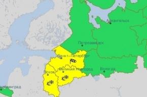 Гидрометцентр объявил желтый уровень опасности в Петербурге из-за непогоды