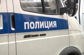 «Работяга»-хитрец похитил экскаватор в Петербурге с охраняемой стоянки