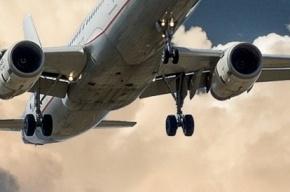 Самолет до Петербурга резко остановили при взлете из Внуково