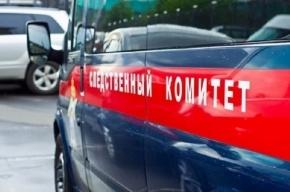 Сын до смерти забил пожилого отца в Подмосковье