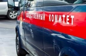 Убитая на Маршала Жукова девушка дружила с преступником