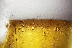 Индивидуальным предпринимателям могут запретить продажу пива в розницу