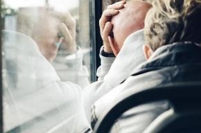 «Автобус счастья» в ромашках соединит «Улицу Дыбенко» и «Петроградскую»