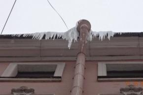Более 10 тысяч крыш очистили от наледи в Петербурге