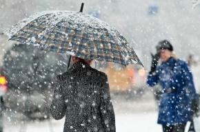 Снежный шторм надвигается на Ленобласть