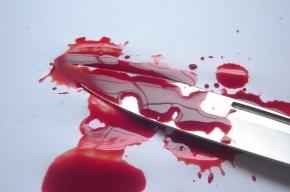 Петербурженку убили, расчленили, части тела разбросали по проспекту Мечникова