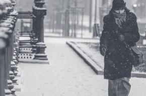 МЧС снова предупреждает о гололедице в Петербурге