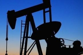 Нефть на мировых биржах торгуется разнонаправлено