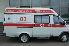 Школьника в Петергофе едва не убили лопатой