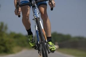 Названа оптимальная скорость для пеших и велосипедных прогулок